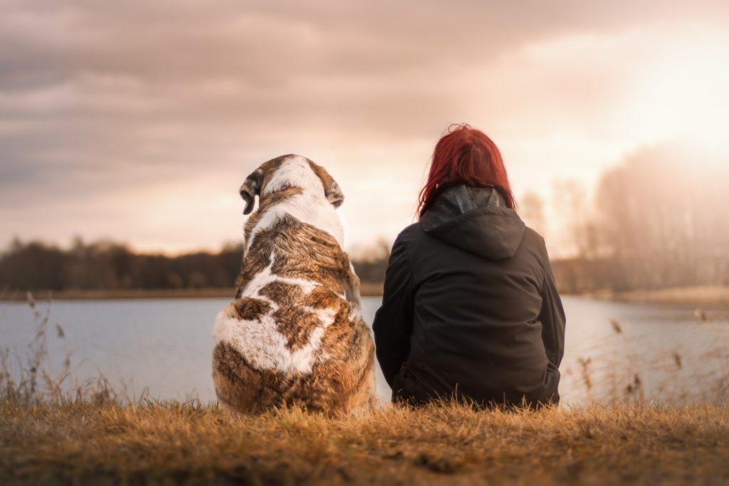 Lees meer over het artikel Waarom heb ik geen vrienden?
