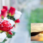 Weduwen en weduwnaars en hun eenzaamheid