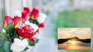 Lees meer over het artikel Weduwen en weduwnaars en hun eenzaamheid